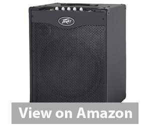 Peavey 03608210 Bass Combo Amplifier Review