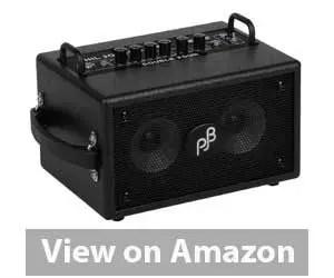 Best Bass Combo Amp: Phil Jones Bass Combo Amp Review