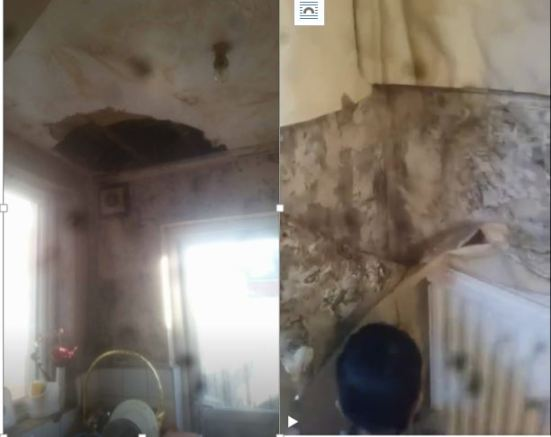 Ceiling fell off and a child facing chronic mould