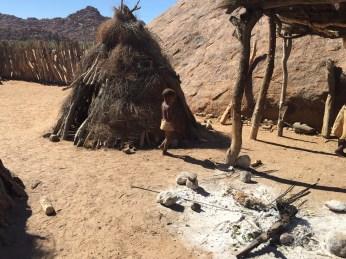 Namibia Safari Pictures 328