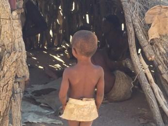 Namibia Safari Pictures 329
