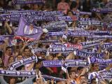 supporters tfc