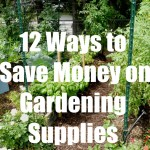 12 Ways to Save Money on Gardening Supplies