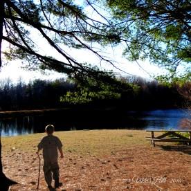 Lake Cheston, Sewanee