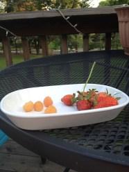 Golden Raspberries and Strawberries
