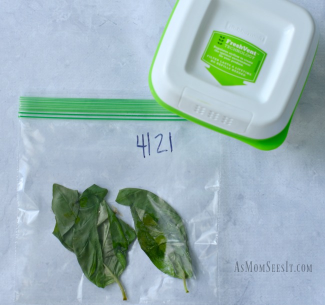 Fresh basil after 19 days in a plastic baggie and in our new Rubbermaid FreshWorks container
