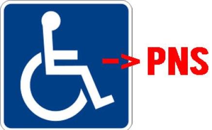 Penyandang Cacat Jadi CPNS