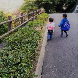 森のようちえんの海遊び @ 松山市三津から梅津寺まで | 松山市 | 愛媛県 | 日本