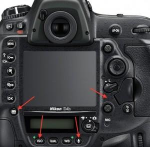 Nikon-D4s-compared-to-Nikon-D5-550x538