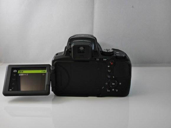 P900P9810094