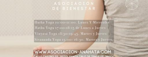 clases de Yoga Febrero 2019