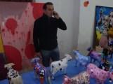 Exposición MiniVacas - 28