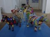 Exposición MiniVacas - 33