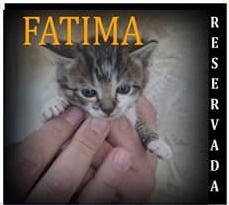 FATIMA2 reservada