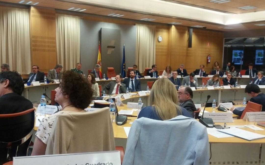 Pleno del Consejo Superior de Tráfico, Seguridad Vial y Movilidad Sostenible