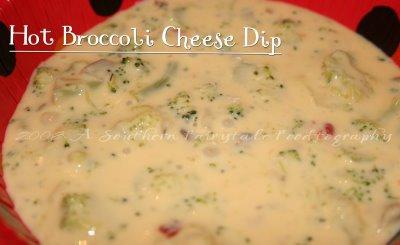 Broccoli Cheese Dip