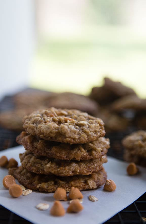 the best ever oatmeal scotchies