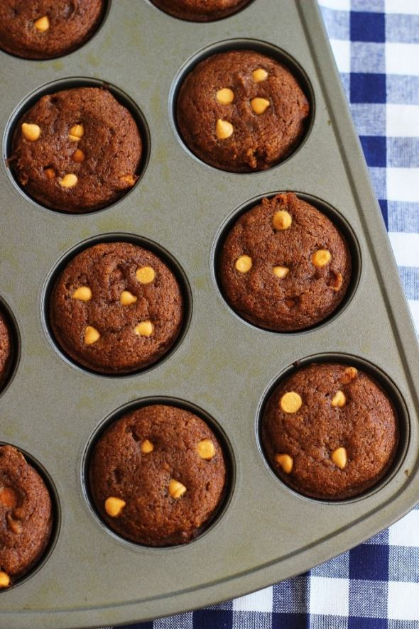 Pumpkin Honey Muffins with Butterscotch chips from Gold Lining Girl