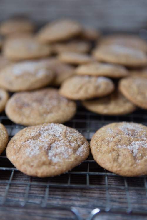 snickerdoodles all sugared up-1