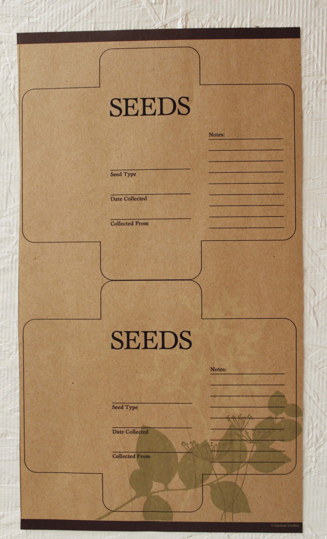 Saving Heirloom Seeds A Southern Garden