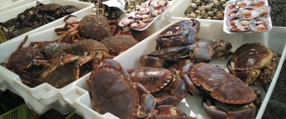 cosa mangiare in Galizia - necora centollo buey - aspassoperlaspagna.it