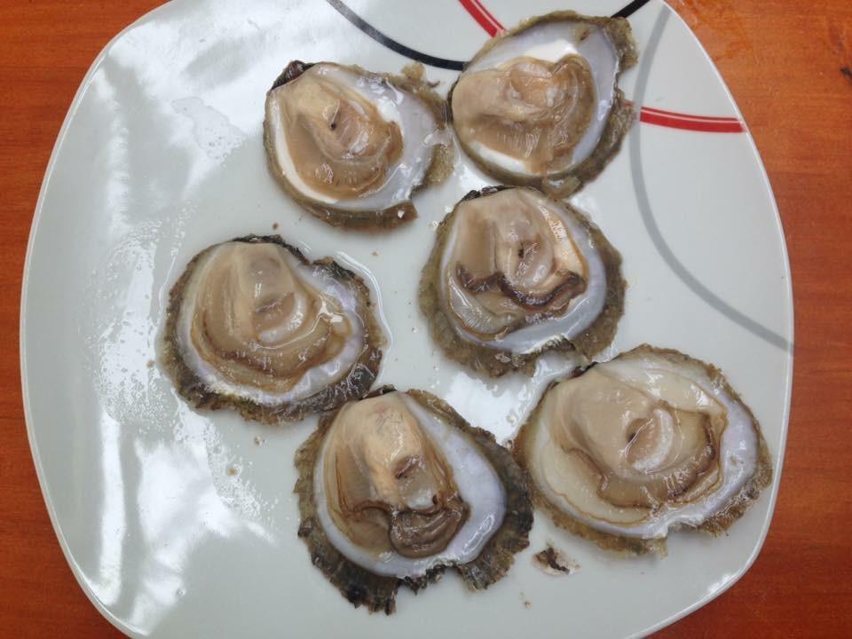 cosa mangiare in Galizia - ostras - aspassoperlaspagna.it