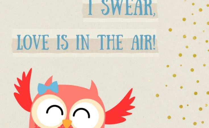 """""""I Swear, Love is in the Air!"""" Owl Printable"""