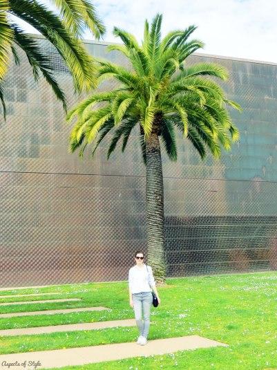 deYoung museum San Francisco