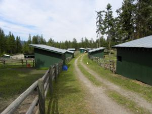 Paddocks with wood-rail fencing & run-in sheds
