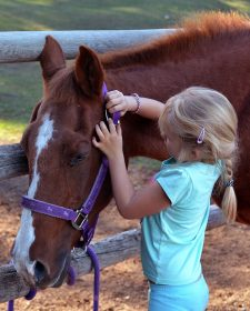 Pony ride birthday parties at Aspengrove Country Resort