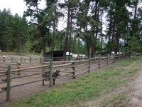wood rail paddock fencing at Aspengrove Country Resort Vernon BC Canda
