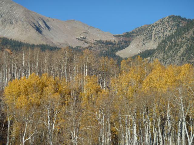 A view toward upper Deep Creek