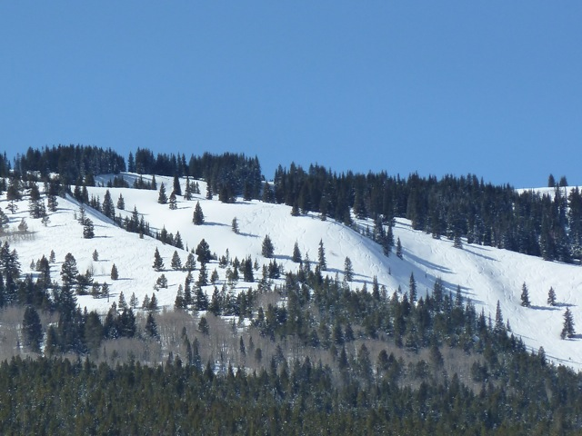 Popular skiing terrain on Burnt Mountain East. The area is outside of the Snowmass Ski Area's operations boundary, but inside its permit boundary. The trail in question would allow skiers to access this terrain and then return to the Two Creeks base area.