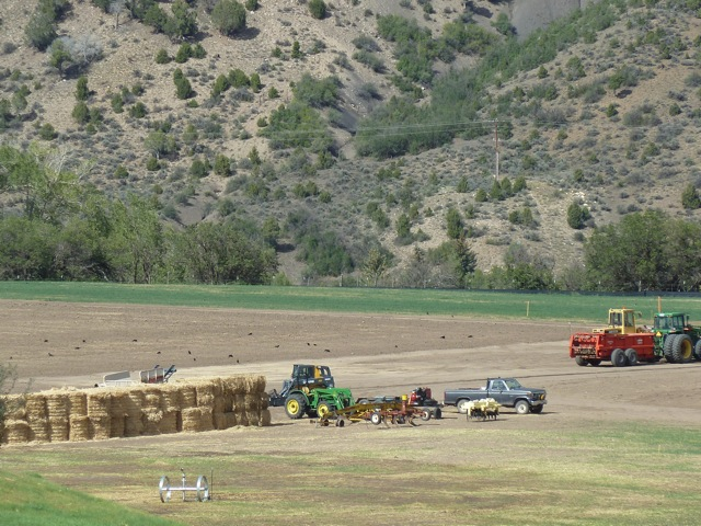 What's to be planted in the field? High Mesa Ranch on Saturday, Sept. 1, 2012.