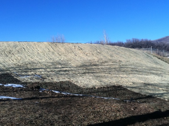 The east side of the dam holding back Thomas Reservoir, sans trees, on Nov. 26, 2012. The tall trees that once grew on top of the dam, and their roots that grew in the dam itself, have been removed.