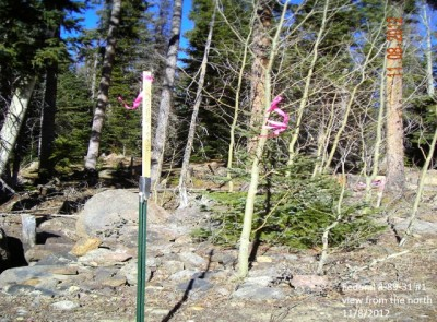 This is a photo of the proposed drilling site in Pitkin County.