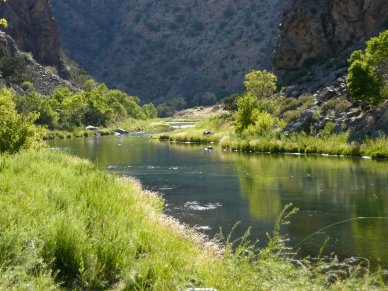 A section of the Gunnison River below Blue Mesa Reservoir. American Rivers is concerned that HR 3189 could mean less water in this stretch of river.