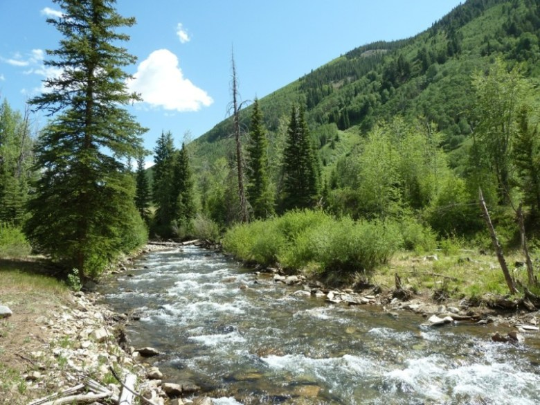 Upper Castle Creek, near the location where the city of Aspen is maintaining conditional water rights for a dam and reservoir.