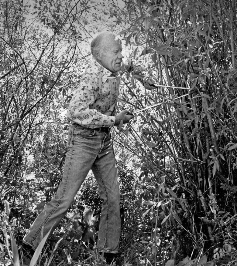 North Star Ranch owner James Smith waged a mostly futile battle against willows in the 1950s-70s. Today, willows are recognized as beneficial species for river stability, animal habitat and biodiversity.