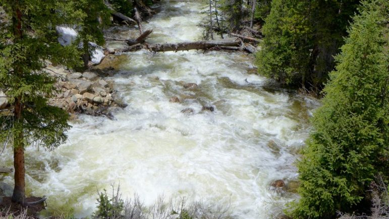 Flows in the main stem of the Roaring Fork River on Tuesday, June 14, 2016 below the diversion dam on the upper Roaring Fork. The flows shown heading toward Aspen, about 250 cfs, include flow from Lost Man Creek and the main stem of the Fork.