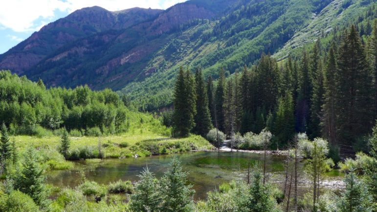 A wetland in the upper Castle Creek valley that would be flooded by a potential Maroon Creek Reservoir, which would be formed by a 170-foot-tall dam.