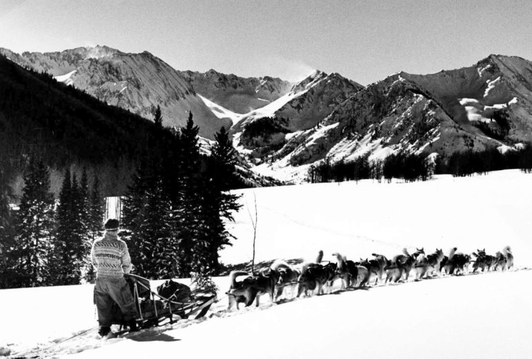 Stuart Mace with his dog sled team in the Ashcroft area, about 1960. The pristine nature of the Ashcroft area was well-known when the idea of putting a dam there was a topic of much discussion.