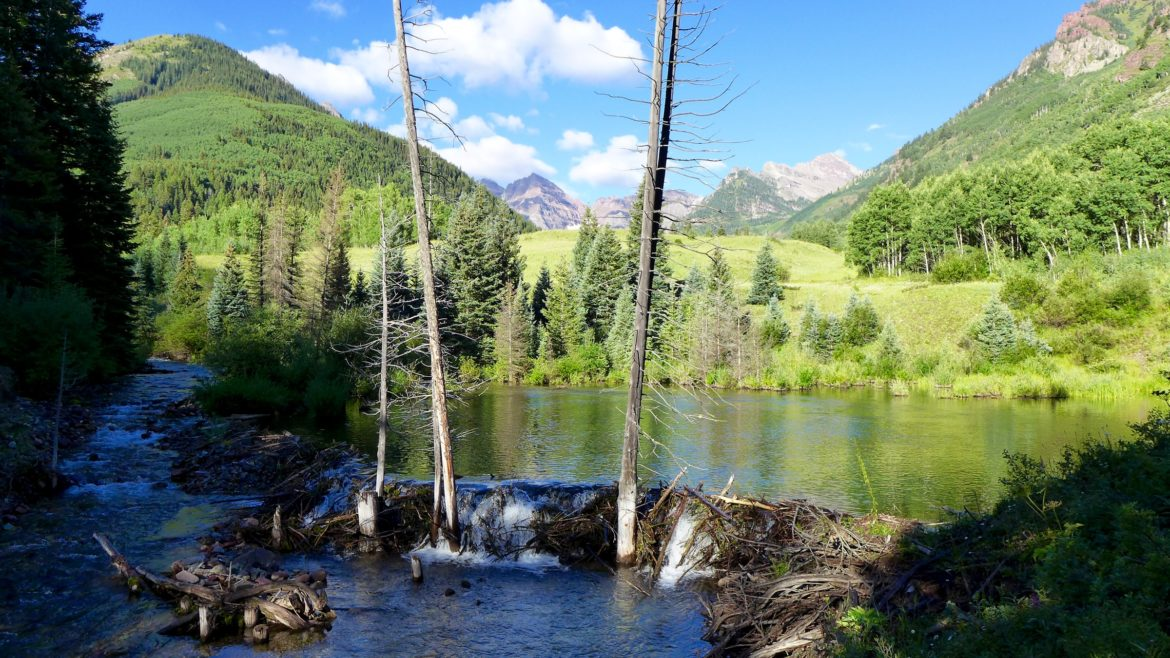 Pitkin County does think it is necessary for the City of Aspen to build a 15-story dam within view of the Maroon Bells. This beaver pond, with Stein Meadow and the Bells in the background, marks the dam site.