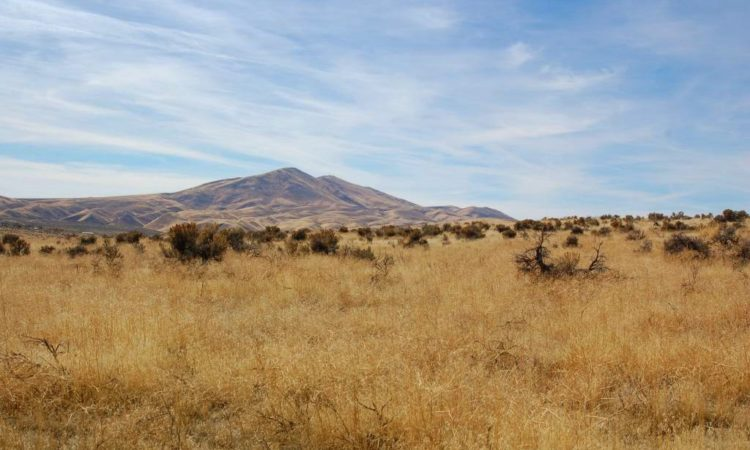 Picts-Twin-River-Ranchos-017-039-003-2.27-Acres-3-750x450