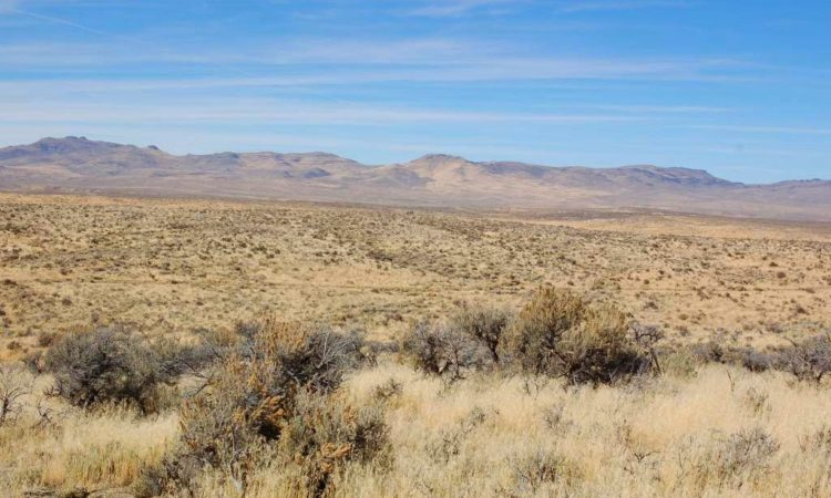 Picts-Twin-River-Ranchos-017-039-003-2.27-Acres-5-750x450