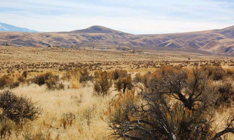 Picts-Twin-River-Ranchos-017-039-003-2.27-Acres-6-750x450