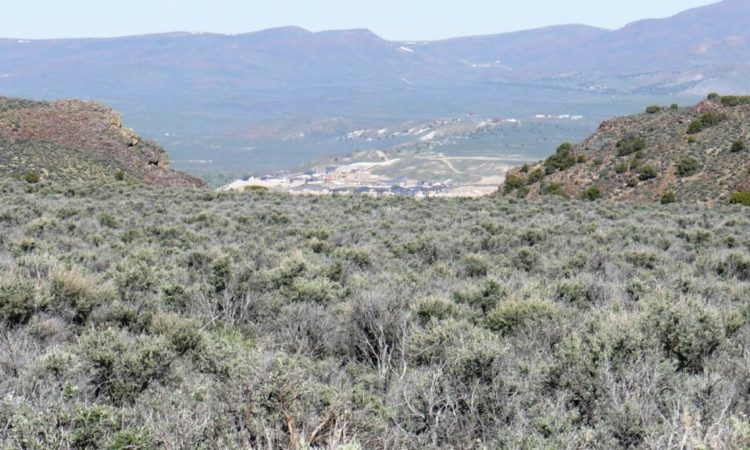 Picts-Last-Chance-Ranch-2.27-Acres-6-750x450