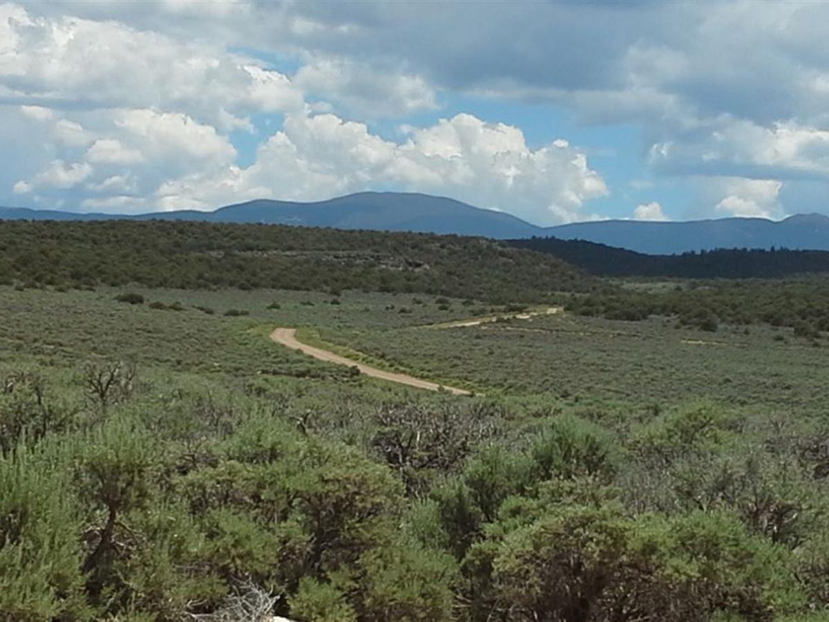 wild-horse-mesa-costilla-cnty-co-los-fuertes-costilla-county-colorado-191812-WZqg6L-XXL