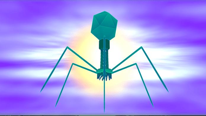 destroy infection causing organisms | Aspioneer