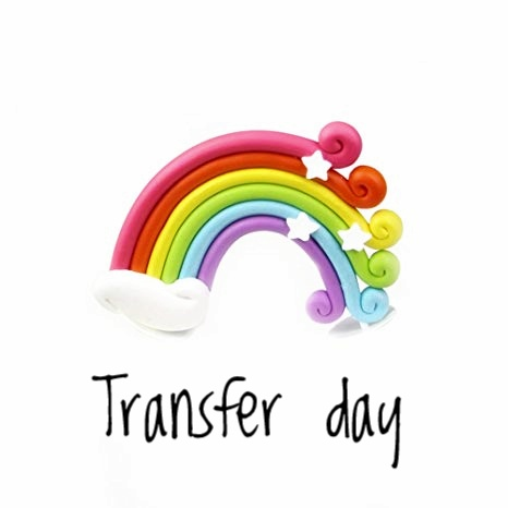 Transfer day - aspirante mamma
